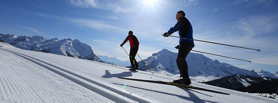 alpes-nord-savoie